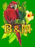 Birds and More Corner Logo