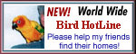 Help lost birds find their way home with the world wide Bird Hotline!