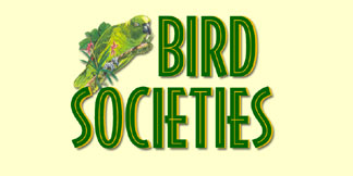 Visit Bird Societies from Around the World!
