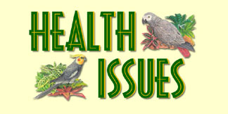 Learn About Health Tips for Your Bird!