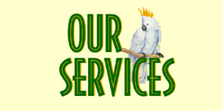 Birds and More Services Include: Grooming, DNA Sexing, Boarding